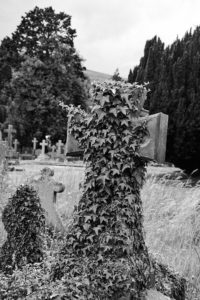 Ivy covered Headstone in Malvern Cemetery