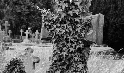 Malvern Cemetery Volunteers' Day